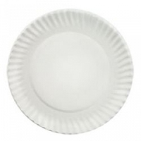 Coated Paper Plates Aspen White (1000/Case)